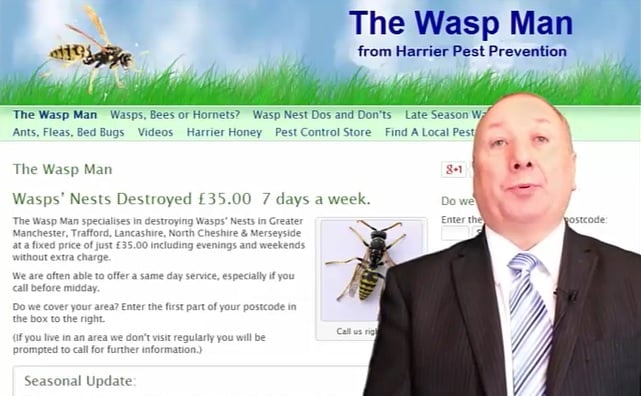 Blackburn Wasps Nests Removal - Wasps Nests Destroyed £39.50 Fixed Price